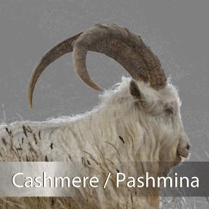 カシミア/パシュミナ