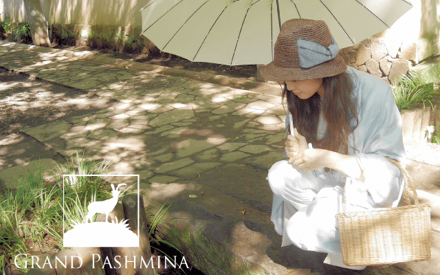 Grand Pashmina グランド パシュミナ