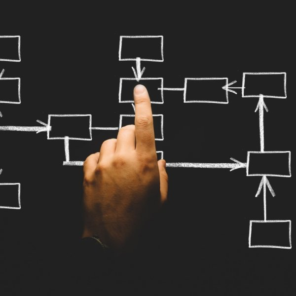 カシミールのパシュミナ ファミリーの組織・仕事分担を教えます|秘密を公開!