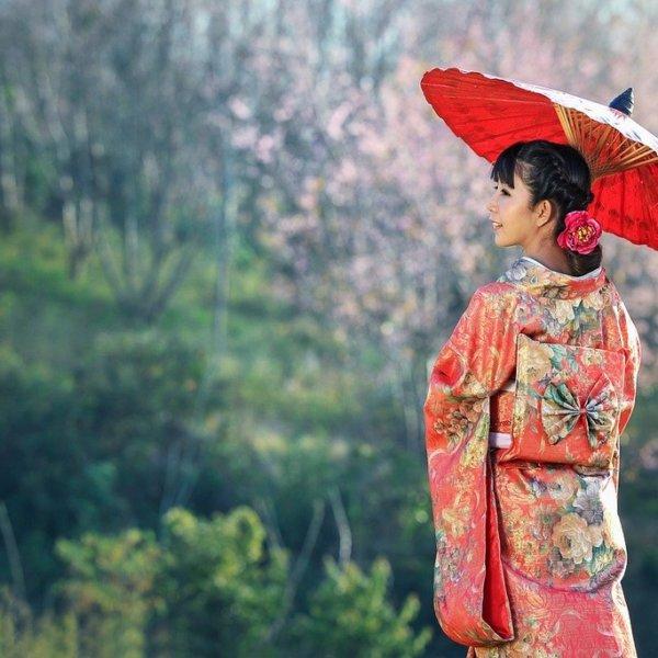 カシミール刺繍が着物に似合う3つの理由